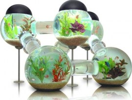cool-fish-tank-design